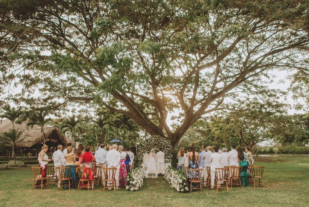 Wedding Planners in Miami